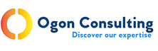 Ogon Consulting: Empowering Insurance Carriers with Expert Technology Services